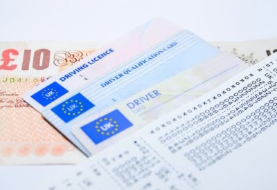 driver licence image examples