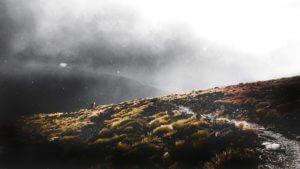 gloomy landscape image