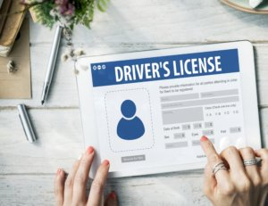 image of example drivers license